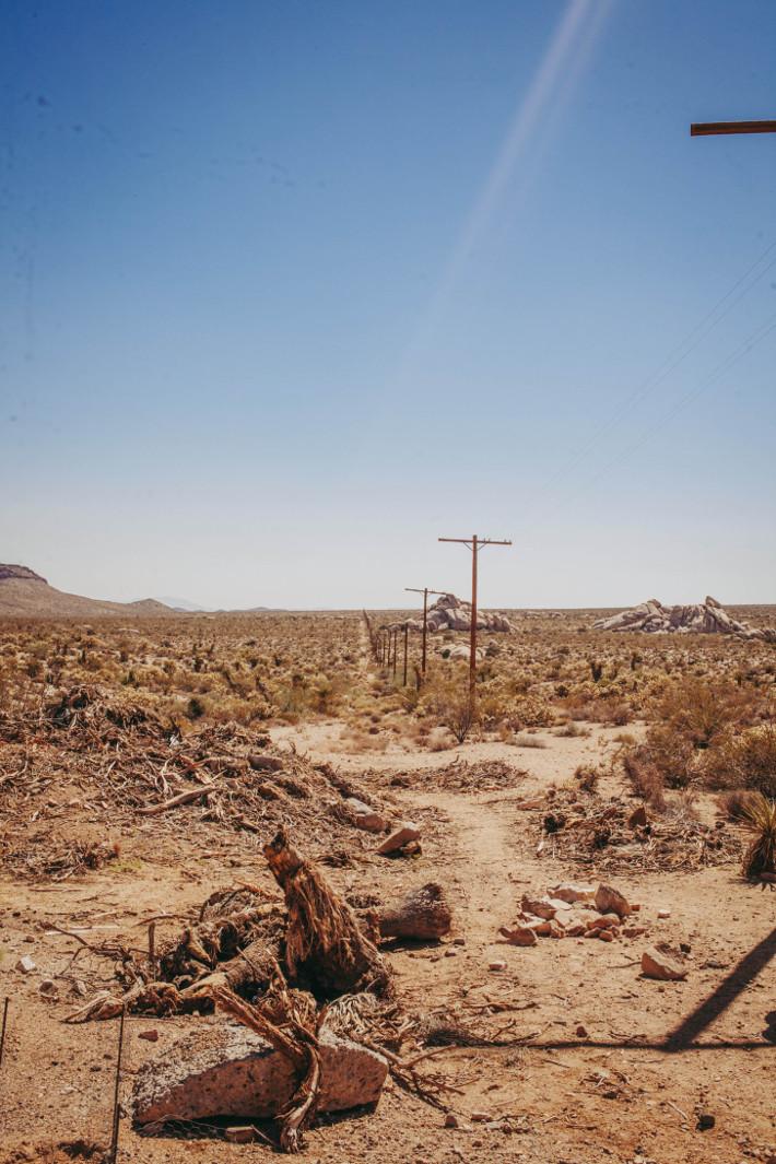 California roadtrip 2018: Mojave desert, Amboy and Seven Magic Mountains