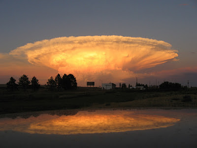 Bhaggi Collections Worlds Rarest And Most Beautiful Cloud