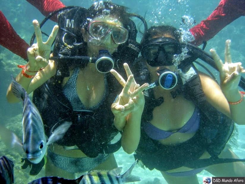Mergulho com cilindro em Maragogi - O que fazer em Maragogi: Caribe Brasileiro