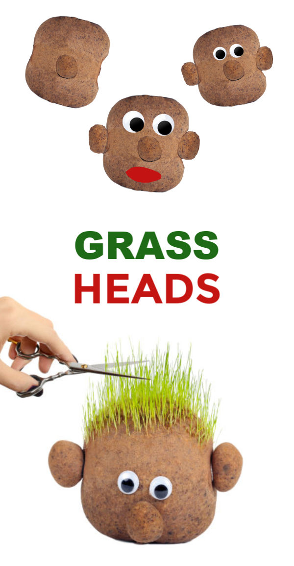 Kids love growing grass seed because it is easy to sprout and grows quickly.  These growing grass heads are super fun for spring & kids can even style their plant person's hair! #grassheadsforkids #grassheads #grassheadcraft #grasshaircupskids #kidsgardencrafts #springcrafts #gardeningforkidspreschool