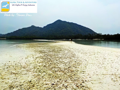 Wisatawan Mancanegara mengunjungi Pasir Timbul Pulau Pahawang kecil