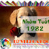Người tuổi Nhâm Tuất 1982: Tính cách và vận mệnh