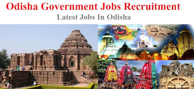 Odisha Govt Jobs, Odisha State Jobs, Latest Odisha Jobs