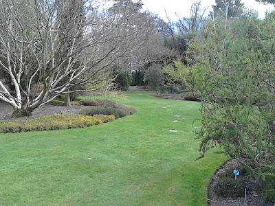 Curving lawns Improve your garden Hillier Gardens Green Fingered Blog