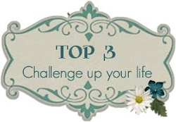 Top 3 Winner Challenge Up Your Life