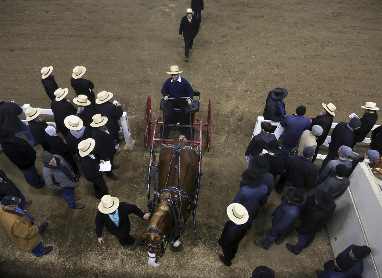 though amish are loathe to shoulder debt they are very good credit risks and rarely default meaning banks are eager to lend them money for land purchases