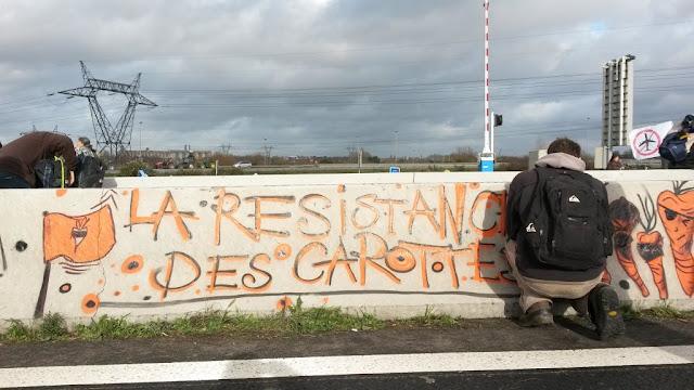 La résistance des carottes, ZAD de Notre-Dame-des-Landes