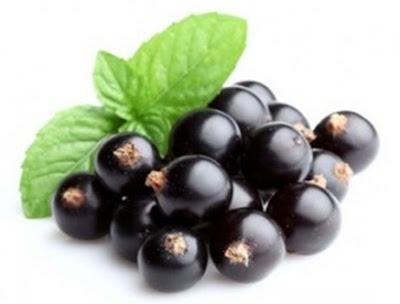 Kandungan Vitamin C pada Blackcurrant dan Manfaatnya