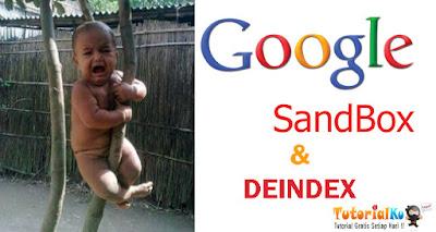 Perbedaan Google Sanbox Dan Deindex