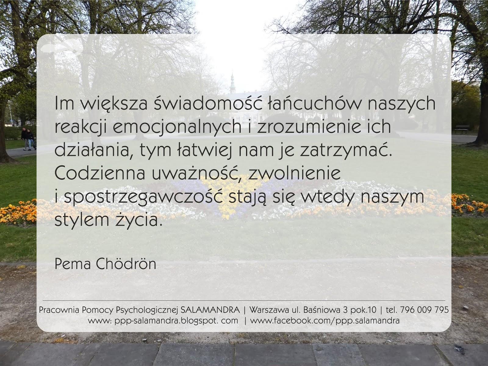 Dobry psycholog Warszawa - buddyzm, świadomość i uważność