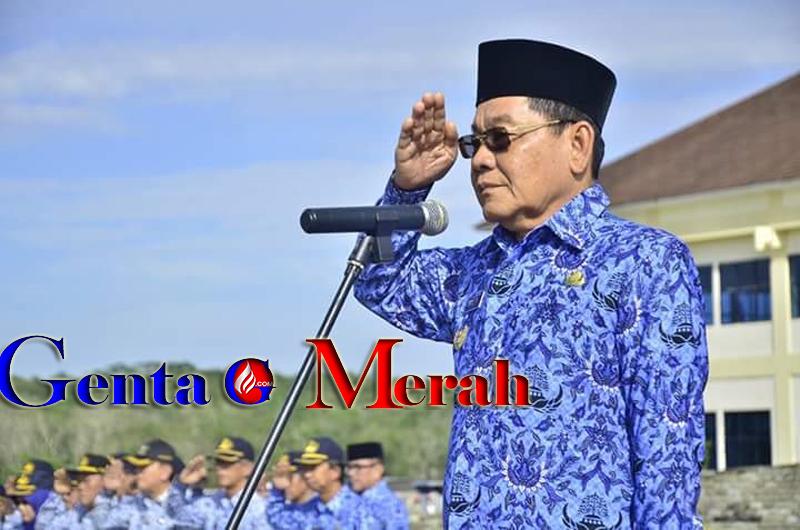 Khamami Jadi Tersangka, Gubernur Lampung Mendaulat Suply Jabat Plt Bupati Mesuji