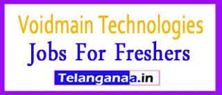 Voidmain Recruitment 2017 Jobs For Freshers Apply
