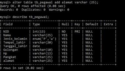 Menambah kolom Baru pada Tabel MySQL