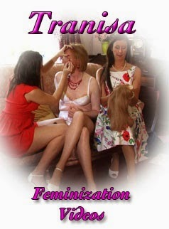 Transsexual feminization caption blogs