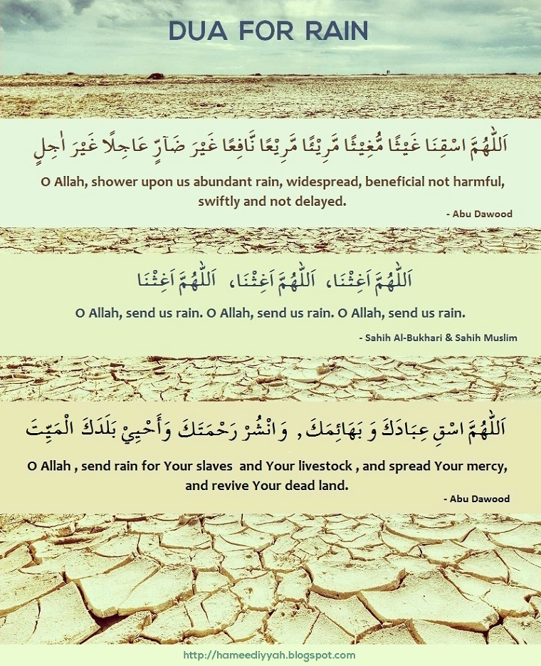 Difference Between Sunni and Tabligh