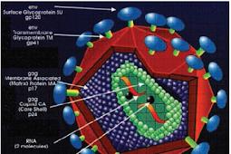 PRS (PENDIDIK REMAJA SEBAYA) / KESJA (KESEHATAN REMAJA) TENTANG HIV/AIDS