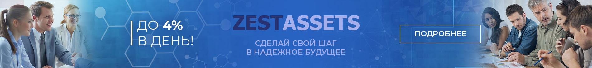 Баннер в шапке zest-assets