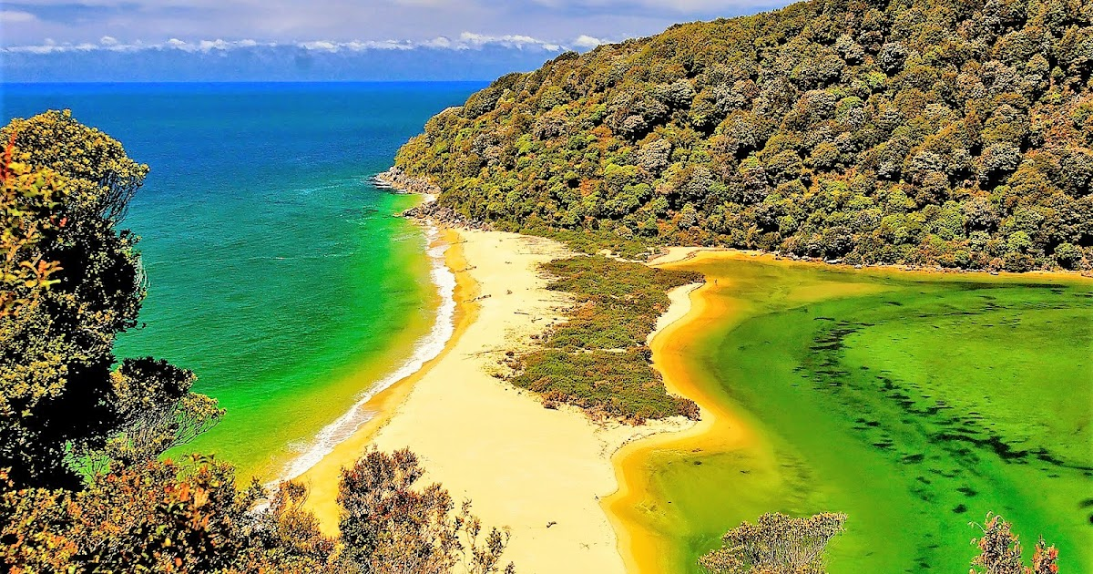 The abel tasman national park located in the top of the south island - 5 Five 5 Abel Tasman National Park South Island New