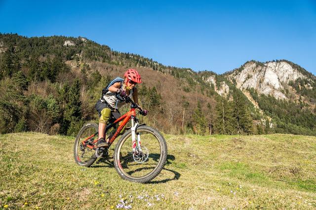 Damen auf dem Mountainbike