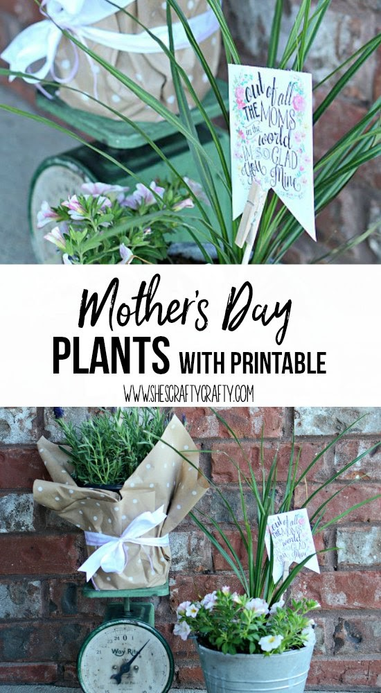 Mother's Day Gift - plants for mom with printable and DIY plant tag