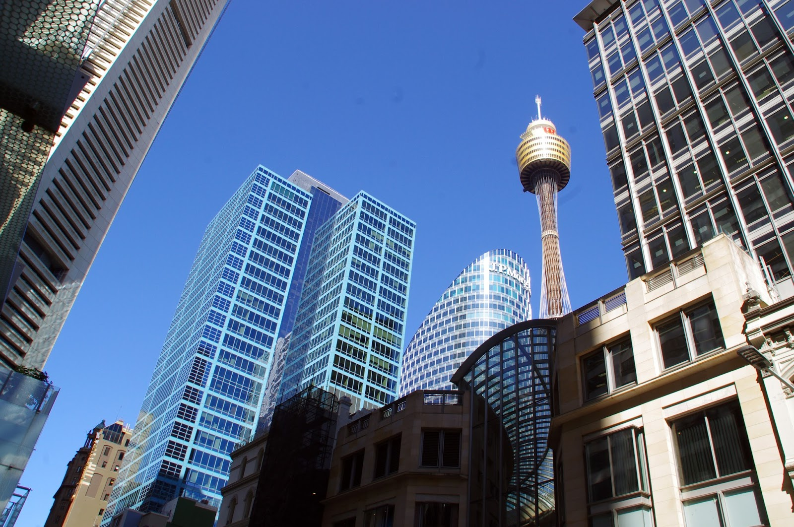 Sydney Skyline from the streets