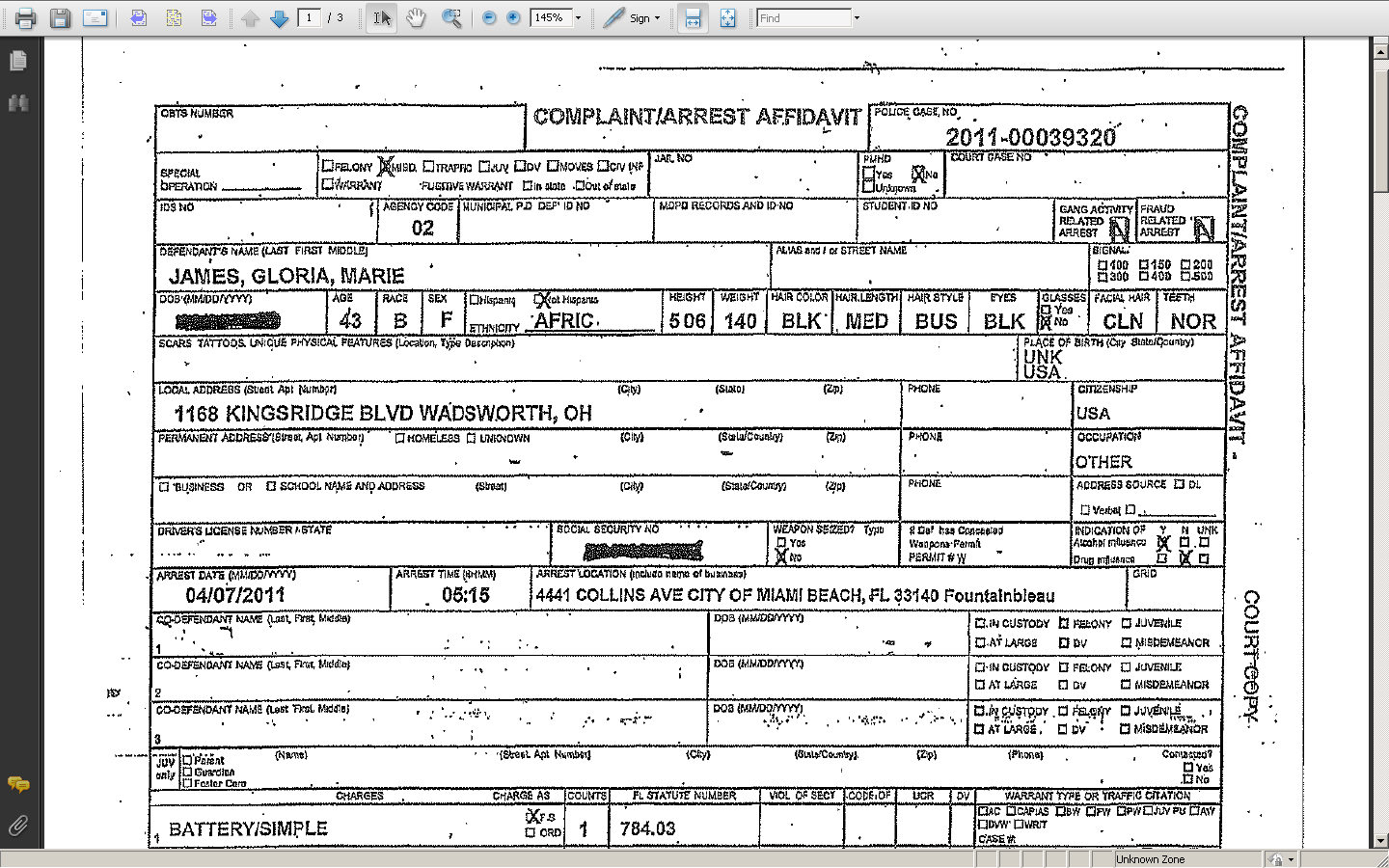 Police Template police report template best business template – Homicide Report Template