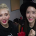 Watch the fun cuts from SNSD HyoYeon's 'HY1000like'