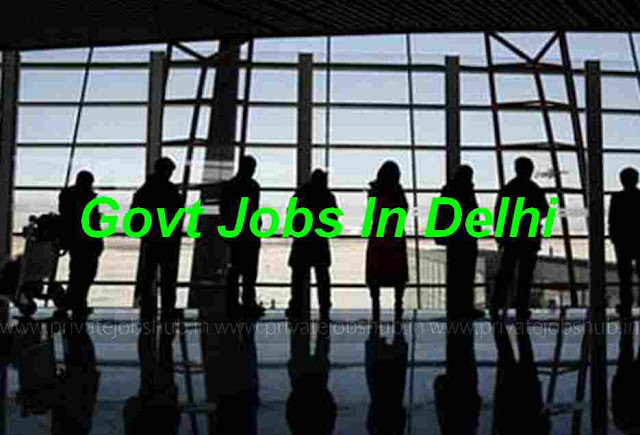 govt%2Bjobs%2Bin%2Bdelhi Online Form Of Govt Job on for 12th pass, 10th pass raliway, district thatta, 12th pass uttrakhand, 10th 12th qualification, punjab pakistan,