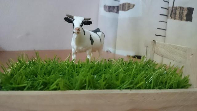 rumput subur