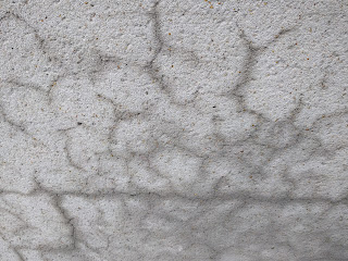 Concrete showing water seeding