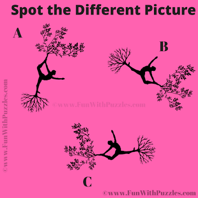 It is Picture Puzzle in which your task is to find the Odd One Out