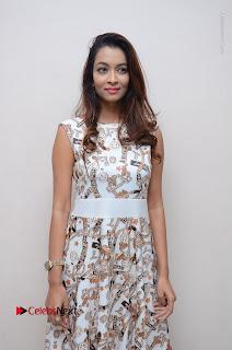 Telugu Actress Reshmi Thakur in Long Dress at Plus One ( 1) Audio Launch  0047.jpg