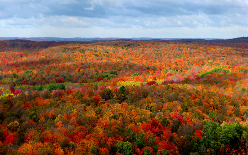Graff Bay City >> I Love Graff Durand: Where to View the Fall Colors in Michigan