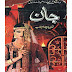 Free download Novel JAAN BY  Shaheena Chanda Mehtab