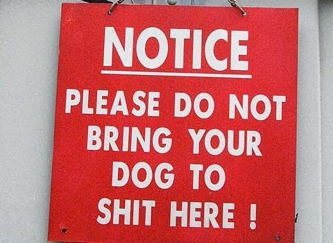 Funny Africa notice dog sign picture - please do not bring your dog to sh1t here