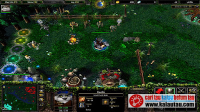 kalautau,com - Tahun 2002 Blizzard merilis game Warcraft 3 : Reign of Chaos (W3RoC)
