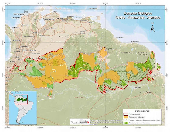 A imensa dimensão do 'Corredor Biológico Andes - Amazonas - Atlântico' ou AAA.