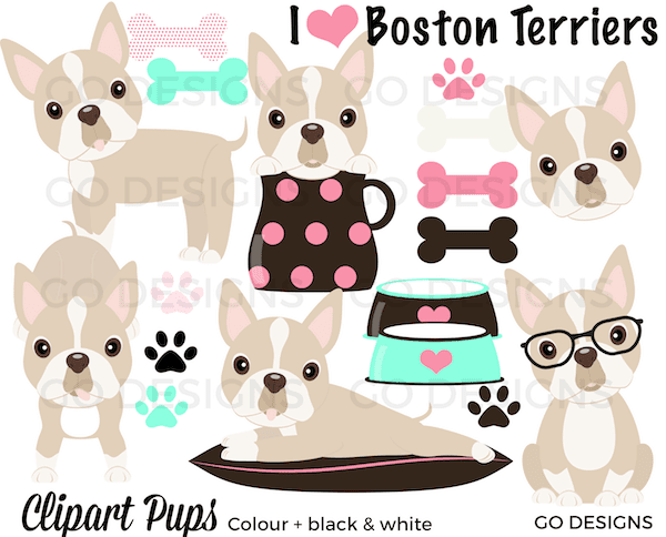 New Boston Terrier Clipart: Black, red, and cream-coloured terriers. Super cute clipart! By GradeONEderfulDesigns.com