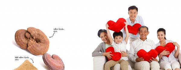 dùng nấm linh chi cho người huyết áp thấp