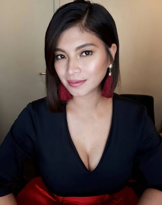 Angel Locsin Finally Revealed Why She Did Not Want To Work With Neil Arce!
