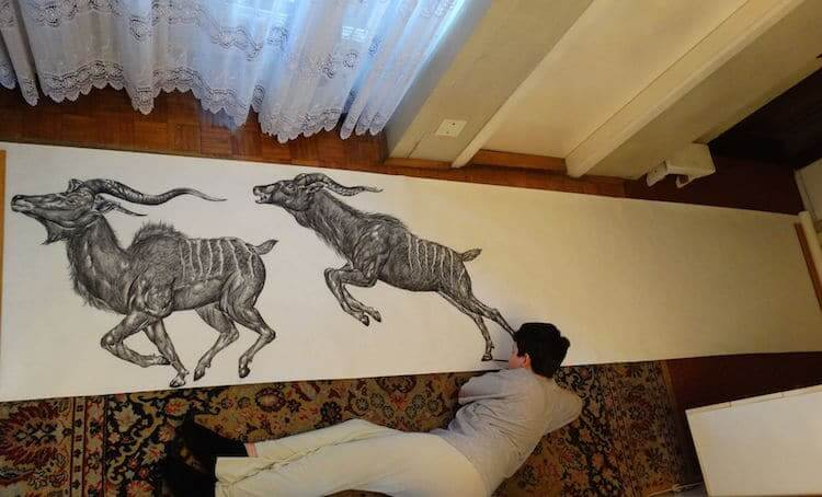 15-Year-Old Boy Illustrates Stunning Animal Drawings From Memory