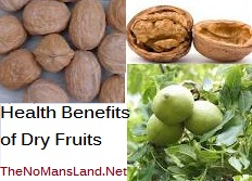 dry fruits health benefits