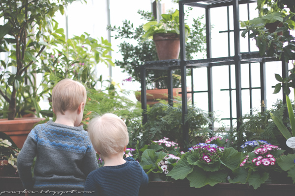 Lapset talvipuutarhassa