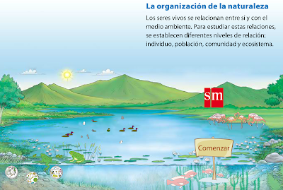 http://www.smlir.net/ArchivosCMS/DemoLir/SM/U5_p57_01/Organizacion%20de%20la%20naturaleza.swf