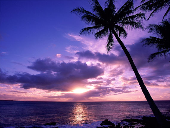 Hd Tropical Island Beach Paradise Wallpapers And Backgrounds: 10 Beautiful Landscape Wallpapers