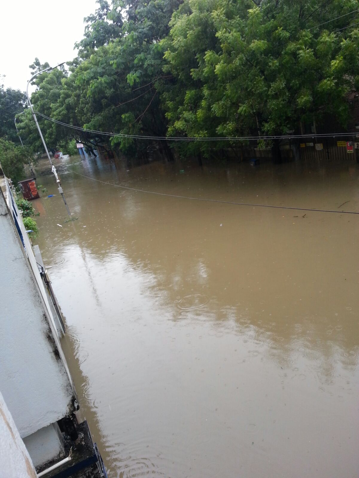 sandhya s blog chennai floods when essay topics became reality  flooded street