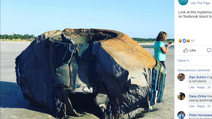 Mysterious Object Washed Ashore On The Beach Of South Carolina