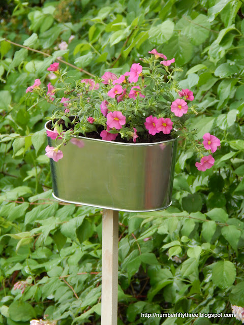 Add interest to your garden with a galvanized planter