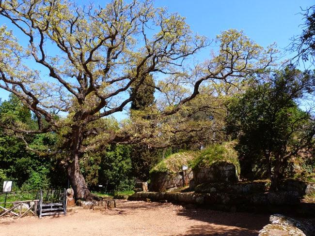 "A tumba colorida, chamada ""Dos Relevos"", a mais importante de Cerveteri"