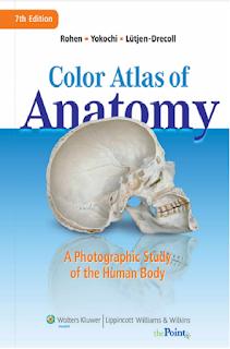 Download ebook pdf anatomy free Color Atlas Of Anatomy A Photographic Study